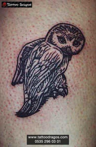 Baykuş Kuş Tattoo