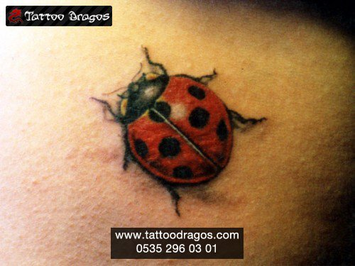 Böcek Uğurböceği Tattoo