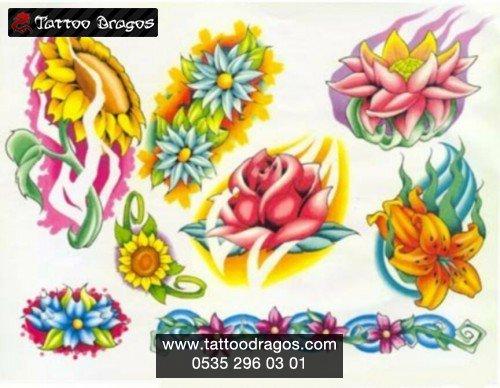 I ek t rleri 6484 tattoo dragos for Salon cicek turleri