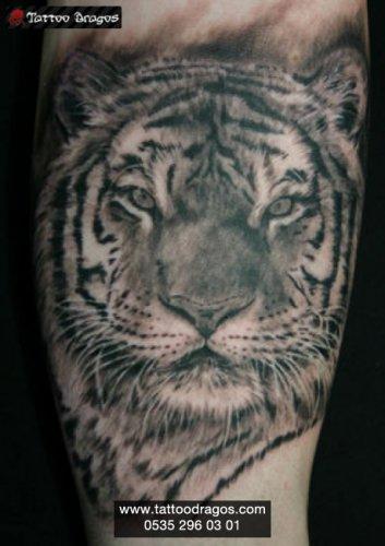 Kaplan Tattoo
