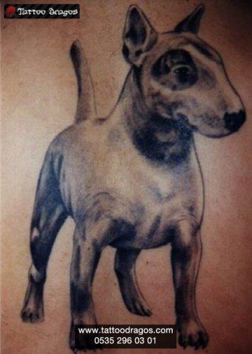 Köpek Tattoo