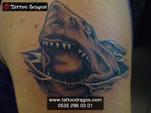 Köpekbalığı Tattoo