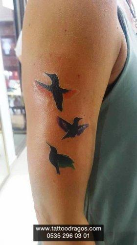 Kuşlar Dövmesi
