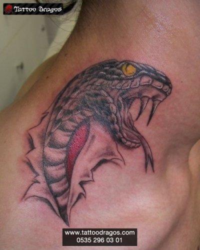 Yırtıktan Uzanan Yılan Tattoo