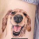Köpek Dövmesi
