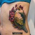 Muhabbet Kuş Dövmesi
